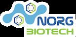 norg-logo-glow